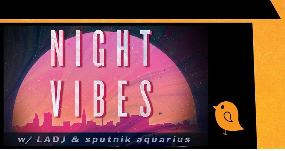 Night Vibes w/ LADJ & sputnik aquarius